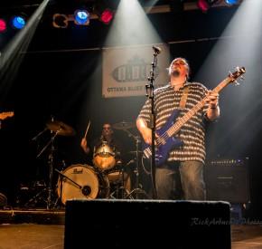 Joe Gaspar Band 7
